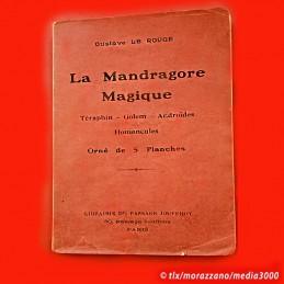 LA MANDRAGORE MAGIQUE